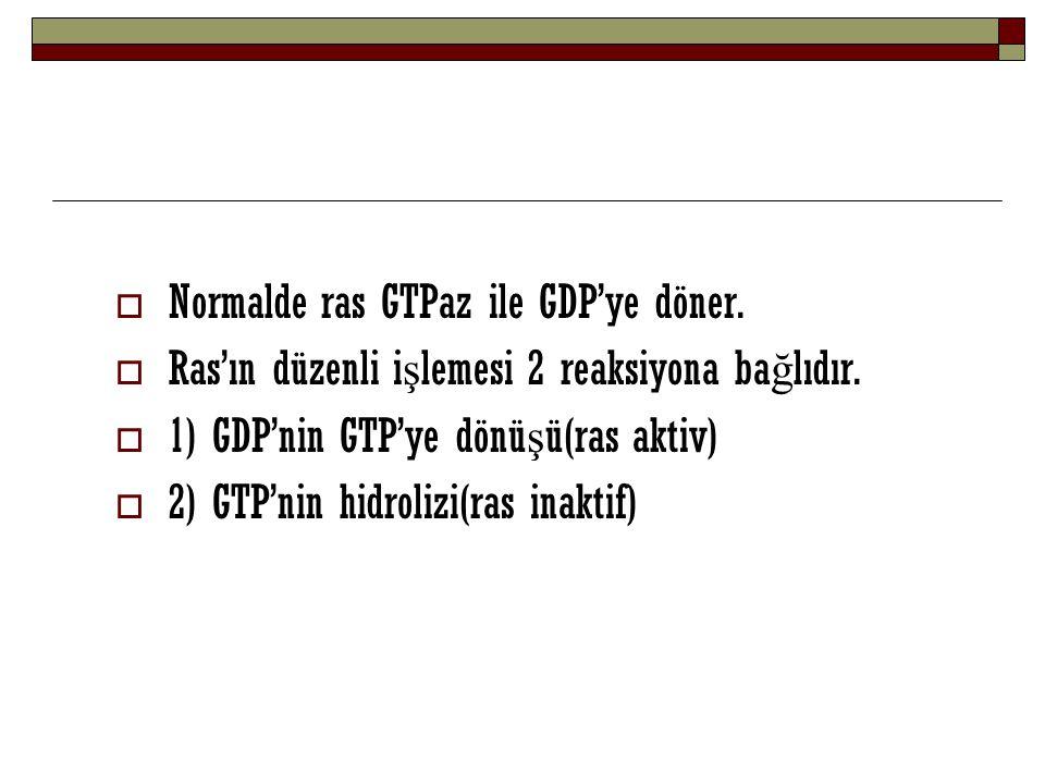  Normalde ras GTPaz ile GDP'ye döner.  Ras'ın düzenli i ş lemesi 2 reaksiyona ba ğ lıdır.  1) GDP'nin GTP'ye dönü ş ü(ras aktiv)  2) GTP'nin hidro