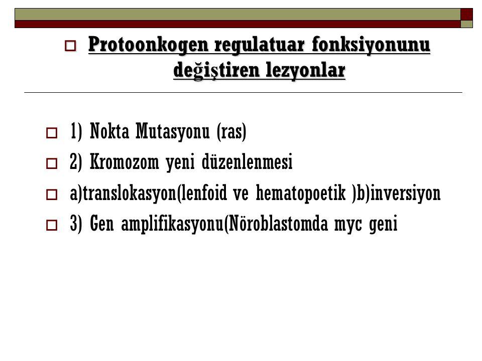  Protoonkogen regulatuar fonksiyonunu de ğ i ş tiren lezyonlar  1) Nokta Mutasyonu (ras)  2) Kromozom yeni düzenlenmesi  a)translokasyon(lenfoid v