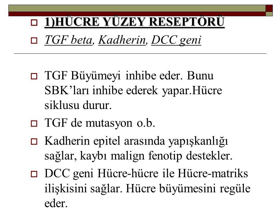  1)HÜCRE YÜZEY RESEPTÖRÜ  TGF beta, Kadherin, DCC geni  TGF Büyümeyi inhibe eder. Bunu SBK'ları inhibe ederek yapar.Hücre siklusu durur.  TGF de m