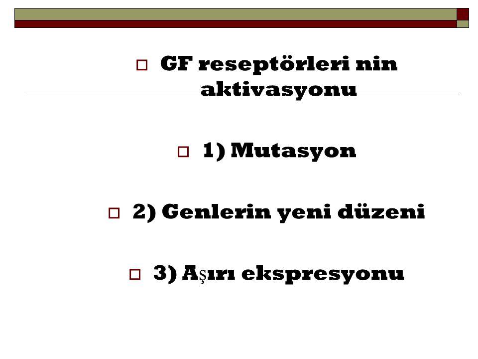  Reseptörlerin onkojenik versiyonları persistan dimerizasyonuna, GF'e ba ğ lanmadan aktive olmasına n.o.