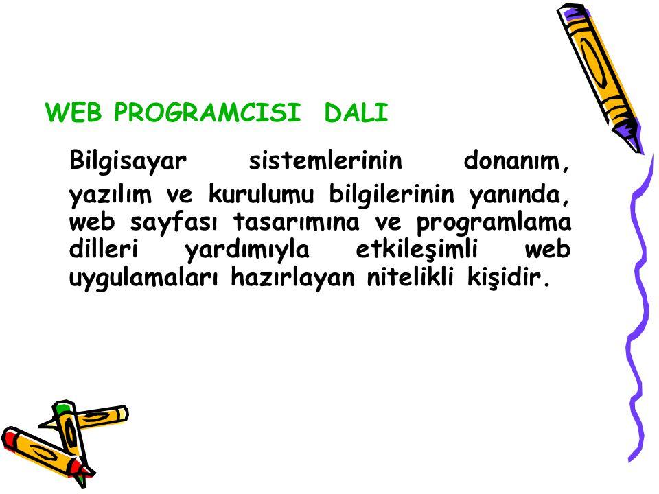WEB PROGRAMCISI DALI Bilgisayar sistemlerinin donanım, yazılım ve kurulumu bilgilerinin yanında, web sayfası tasarımına ve programlama dilleri yardımı