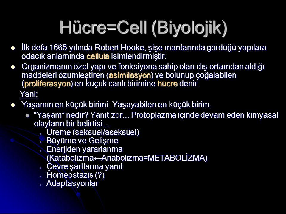 Hücre=Cell (Biyolojik) İlk defa 1665 yılında Robert Hooke, şişe mantarında gördüğü yapılara odacık anlamında cellula isimlendirmiştir. İlk defa 1665 y