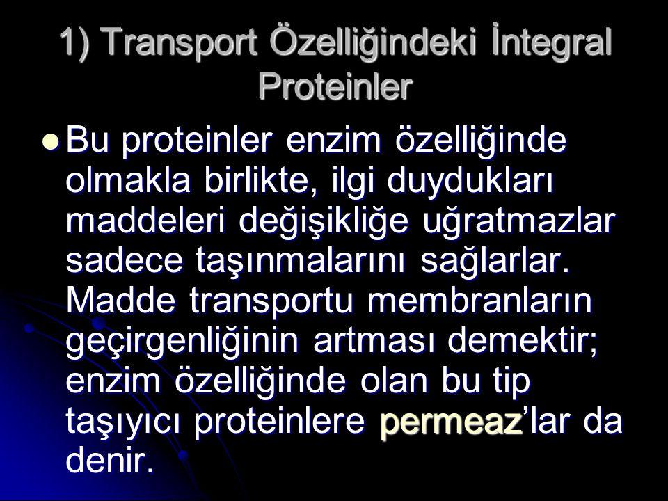 Bu proteinler enzim özelliğinde olmakla birlikte, ilgi duydukları maddeleri değişikliğe uğratmazlar sadece taşınmalarını sağlarlar. Madde transportu m