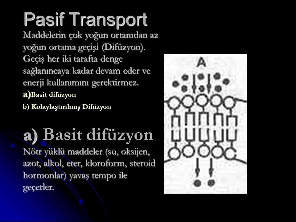 Pasif Transport Maddelerin çok yoğun ortamdan az yoğun ortama geçişi (Difüzyon). Geçiş her iki tarafta denge sağlanıncaya kadar devam eder ve enerji k