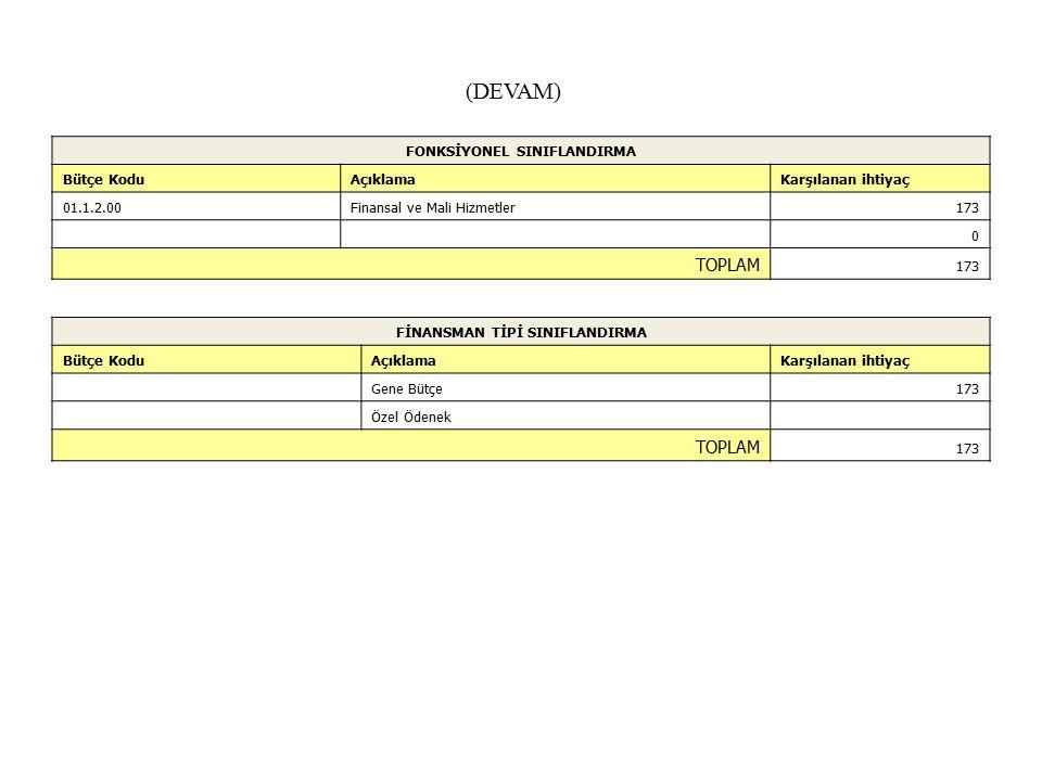 FONKSİYONEL SINIFLANDIRMA Bütçe KoduAçıklamaKarşılanan ihtiyaç 01.1.2.00Finansal ve Mali Hizmetler173 0 TOPLAM 173 FİNANSMAN TİPİ SINIFLANDIRMA Bütçe