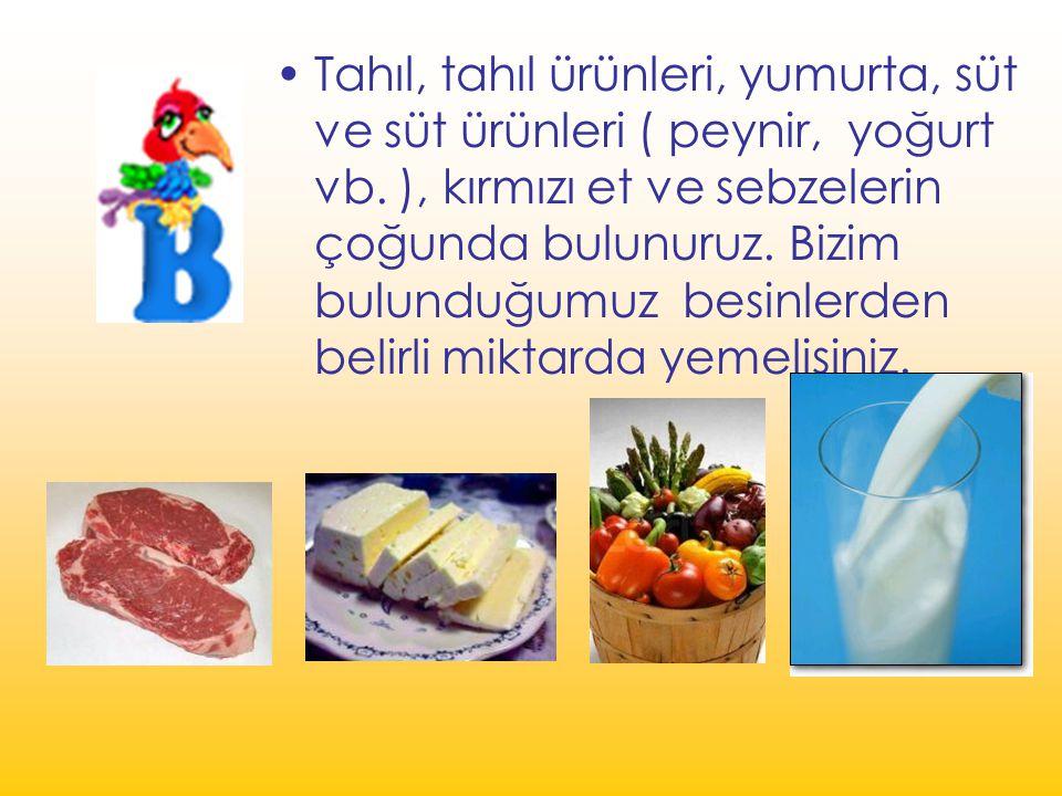 Tahıl, tahıl ürünleri, yumurta, süt ve süt ürünleri ( peynir, yoğurt vb. ), kırmızı et ve sebzelerin çoğunda bulunuruz. Bizim bulunduğumuz besinlerden