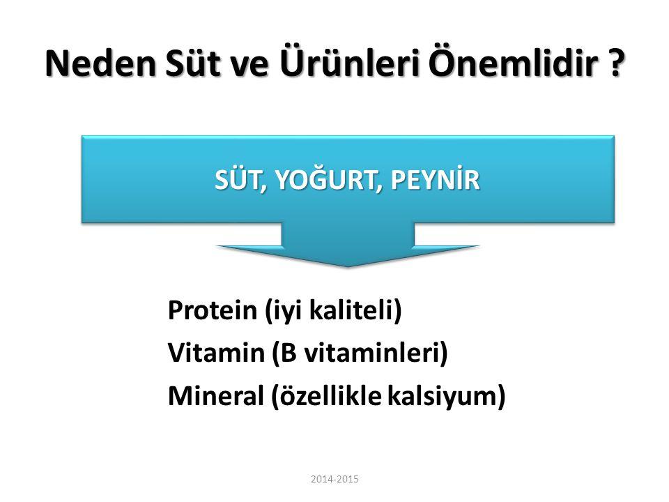 Neden Süt ve Ürünleri Önemlidir ? Protein (iyi kaliteli) Vitamin (B vitaminleri) Mineral (özellikle kalsiyum) SÜT, YOĞURT, PEYNİR 2014-2015