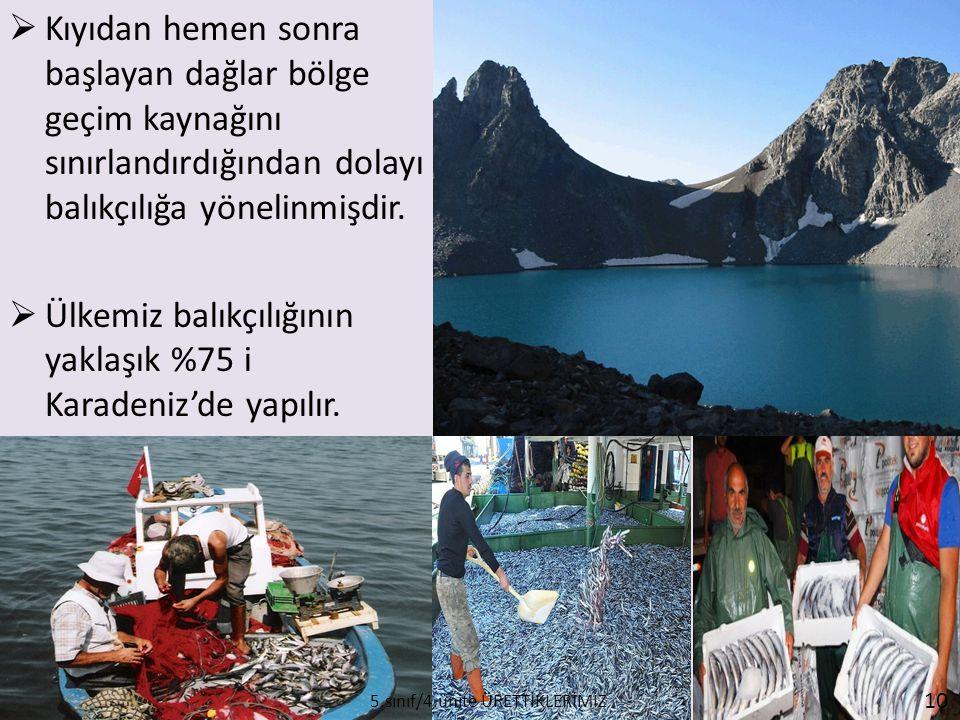  Kıyıdan hemen sonra başlayan dağlar bölge geçim kaynağını sınırlandırdığından dolayı balıkçılığa yönelinmişdir.  Ülkemiz balıkçılığının yaklaşık %7