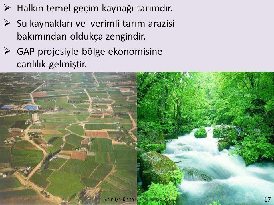  Halkın temel geçim kaynağı tarımdır.  Su kaynakları ve verimli tarım arazisi bakımından oldukça zengindir.  GAP projesiyle bölge ekonomisine canlı