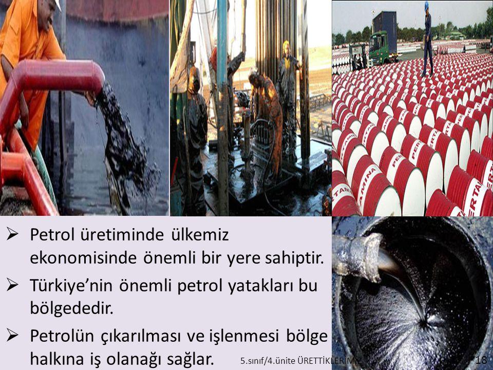  Petrol üretiminde ülkemiz ekonomisinde önemli bir yere sahiptir.  Türkiye'nin önemli petrol yatakları bu bölgededir.  Petrolün çıkarılması ve işle