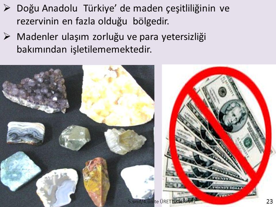  Doğu Anadolu Türkiye' de maden çeşitliliğinin ve rezervinin en fazla olduğu bölgedir.  Madenler ulaşım zorluğu ve para yetersizliği bakımından işle