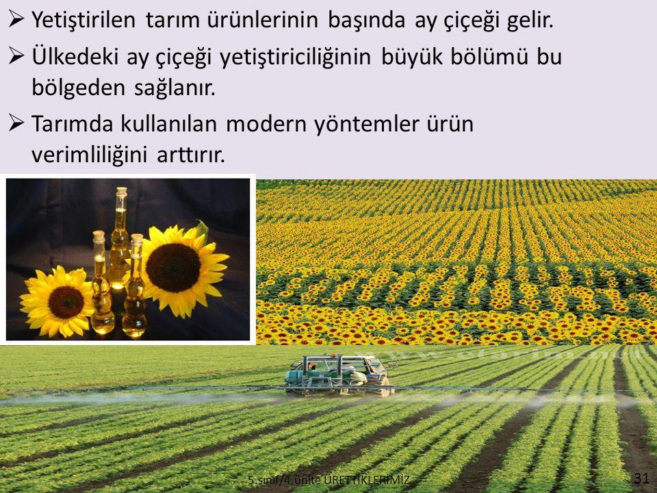  Yetiştirilen tarım ürünlerinin başında ay çiçeği gelir.  Ülkedeki ay çiçeği yetiştiriciliğinin büyük bölümü bu bölgeden sağlanır.  Tarımda kullanı