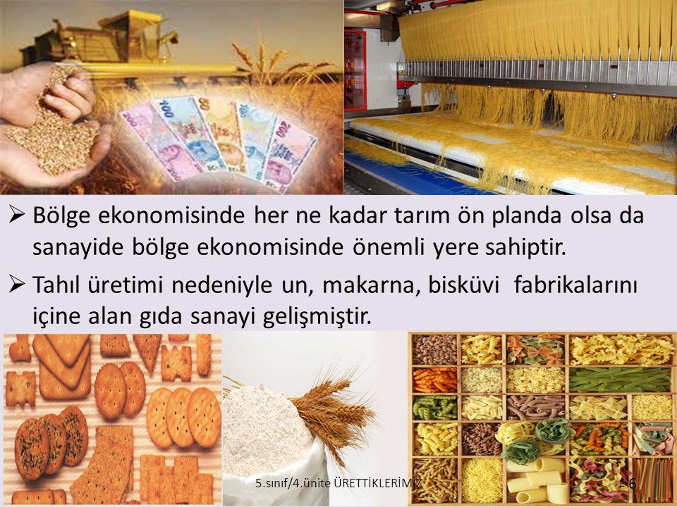 Halkın temel geçim kaynağı tarımdır.