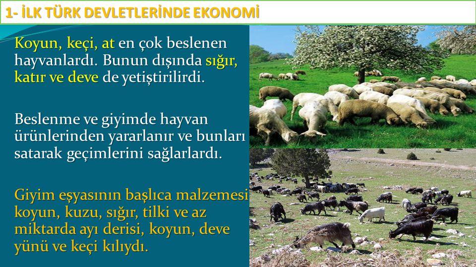 Koyun, keçi, at en çok beslenen hayvanlardı. Bunun dışında sığır, katır ve deve de yetiştirilirdi. Beslenme ve giyimde hayvan ürünlerinden yararlanır