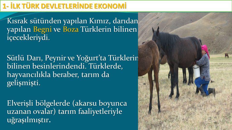 Kısrak sütünden yapılan Kımız, darıdan yapılan Begni ve Boza Türklerin bilinen içecekleriydi. Sütlü Darı, Peynir ve Yoğurt'ta Türklerin bilinen besinl