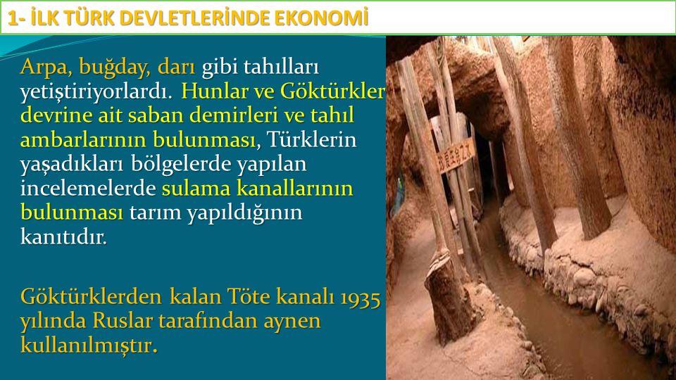 Arpa, buğday, darı gibi tahılları yetiştiriyorlardı. Hunlar ve Göktürkler devrine ait saban demirleri ve tahıl ambarlarının bulunması, Türklerin yaşad