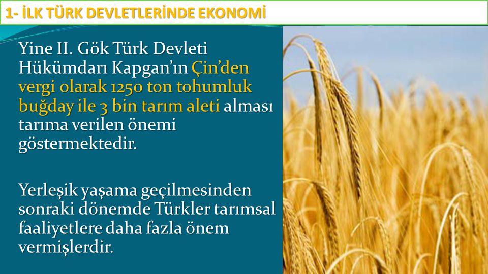 Yine II. Gök Türk Devleti Hükümdarı Kapgan'ın Çin'den vergi olarak 1250 ton tohumluk buğday ile 3 bin tarım aleti alması tarıma verilen önemi gösterme