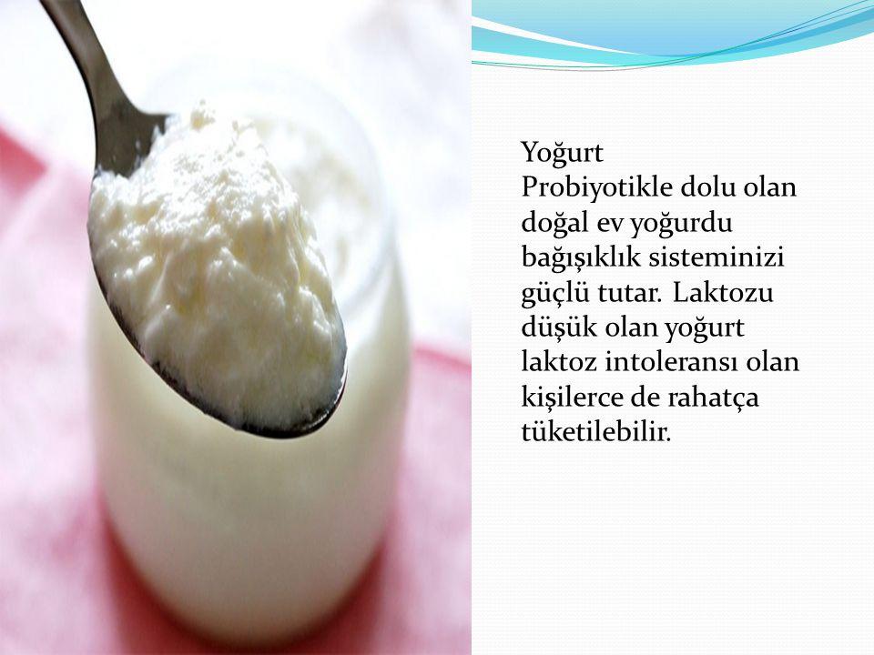 Yoğurt Probiyotikle dolu olan doğal ev yoğurdu bağışıklık sisteminizi güçlü tutar. Laktozu düşük olan yoğurt laktoz intoleransı olan kişilerce de raha