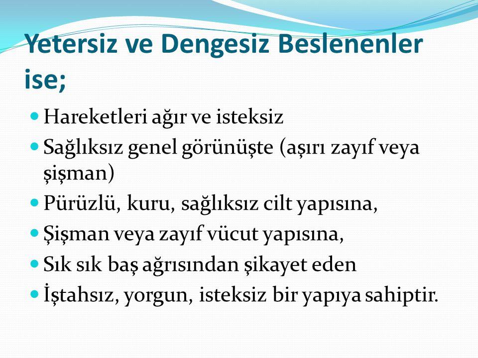 www.beslenme.tr e-diyetisyen.com www.staretejikanaliz.com www.bkihesapla.com www.beslenmebülteni.com