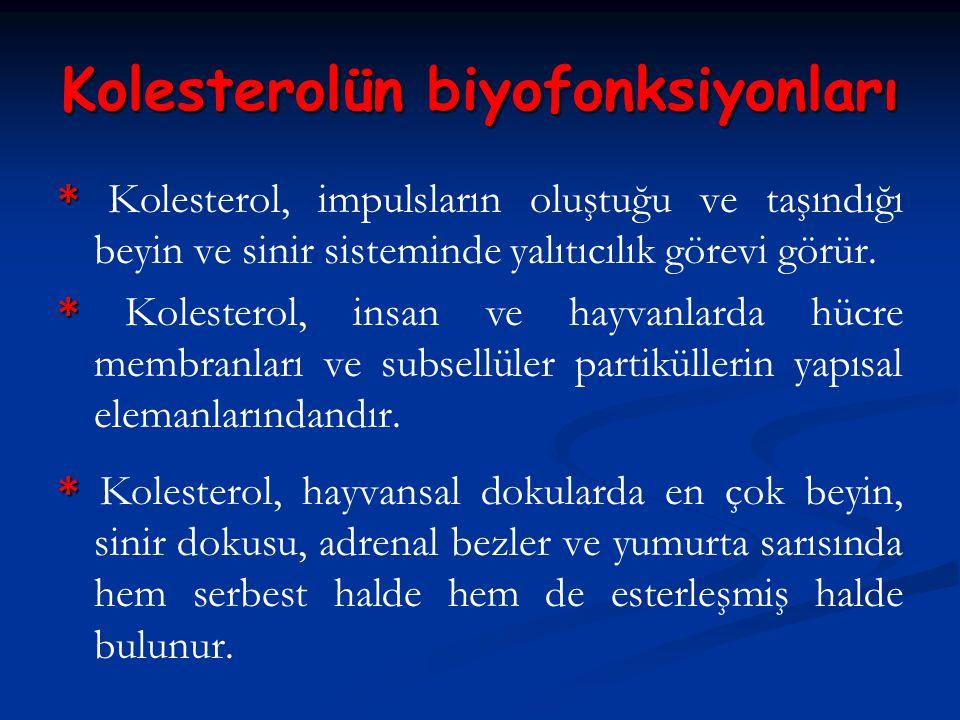 Kolesterolün biyofonksiyonları * * Kolesterol, impulsların oluştuğu ve taşındığı beyin ve sinir sisteminde yalıtıcılık görevi görür. * * Kolesterol, i