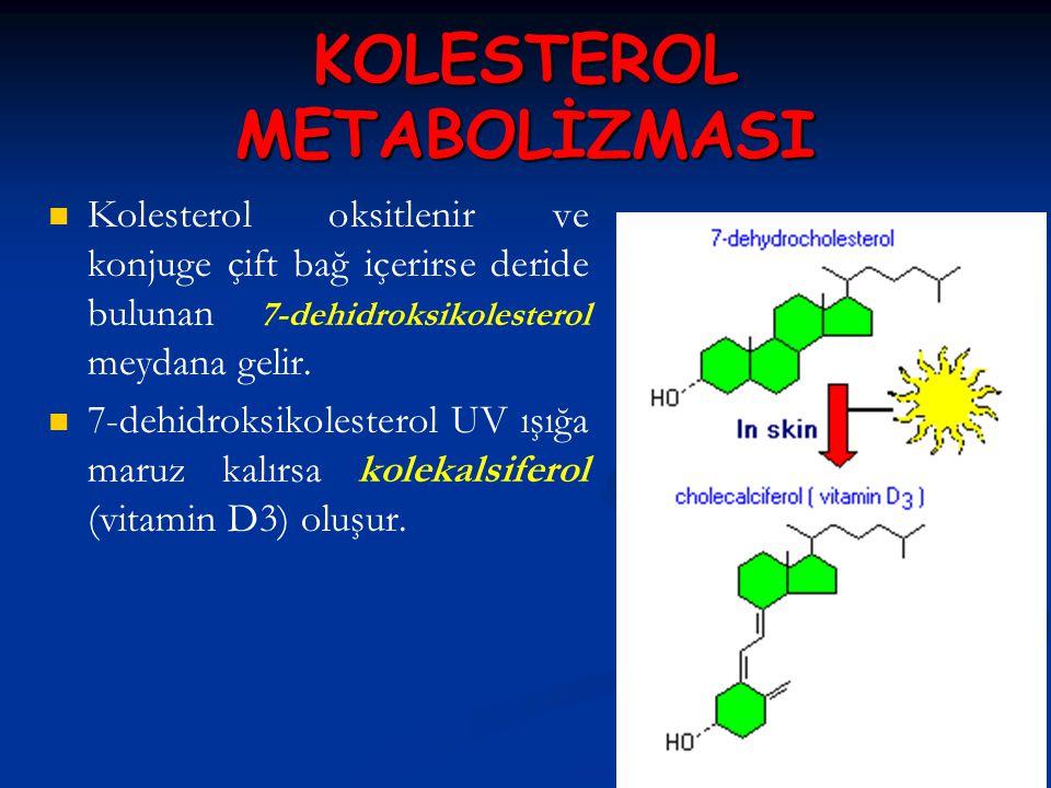 KOLESTEROL METABOLİZMASI Kolesterol oksitlenir ve konjuge çift bağ içerirse deride bulunan 7-dehidroksikolesterol meydana gelir. 7-dehidroksikolestero