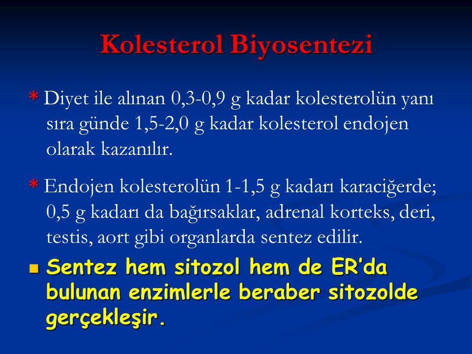 Kolesterol Biyosentezi * * Diyet ile alınan 0,3-0,9 g kadar kolesterolün yanı sıra günde 1,5-2,0 g kadar kolesterol endojen olarak kazanılır. * * Endo