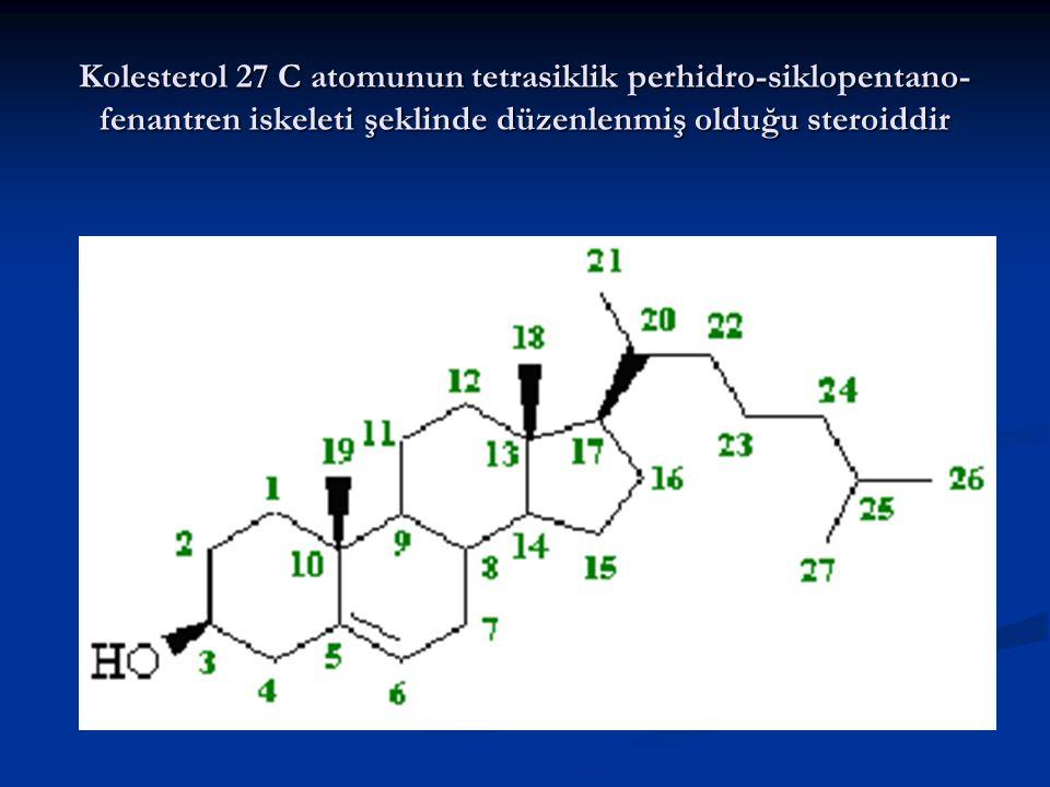 Kolesterol 27 C atomunun tetrasiklik perhidro-siklopentano- fenantren iskeleti şeklinde düzenlenmiş olduğu steroiddir