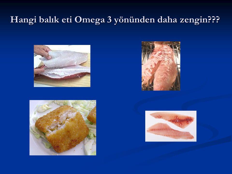Hangi balık eti Omega 3 yönünden daha zengin
