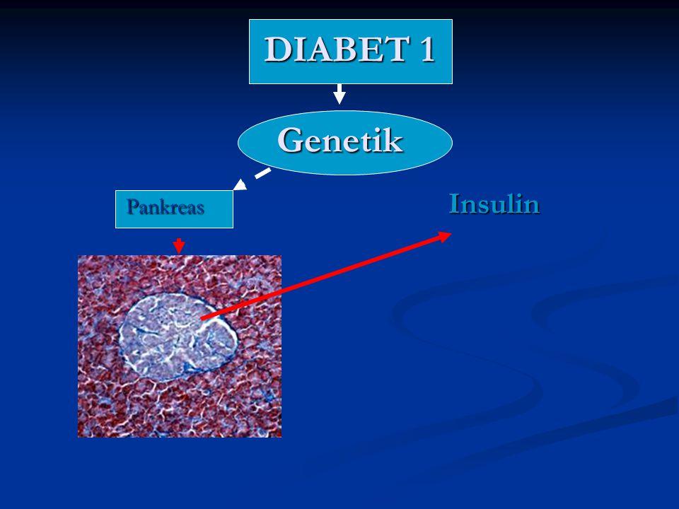 DIABET 2 Yanlış (Yaşam stili+Gıda) Yanlış (Yaşam stili+Gıda)Oksidasyon O 2 + gıdatoksik radikalŞeker