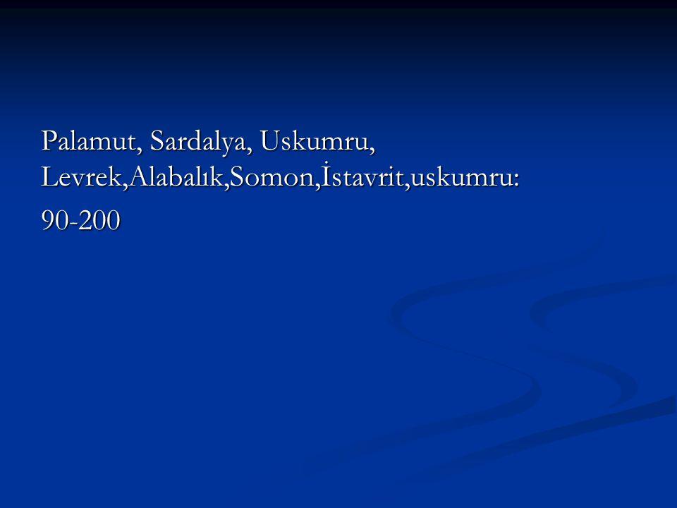 Palamut, Sardalya, Uskumru, Levrek,Alabalık,Somon,İstavrit,uskumru: 90-200
