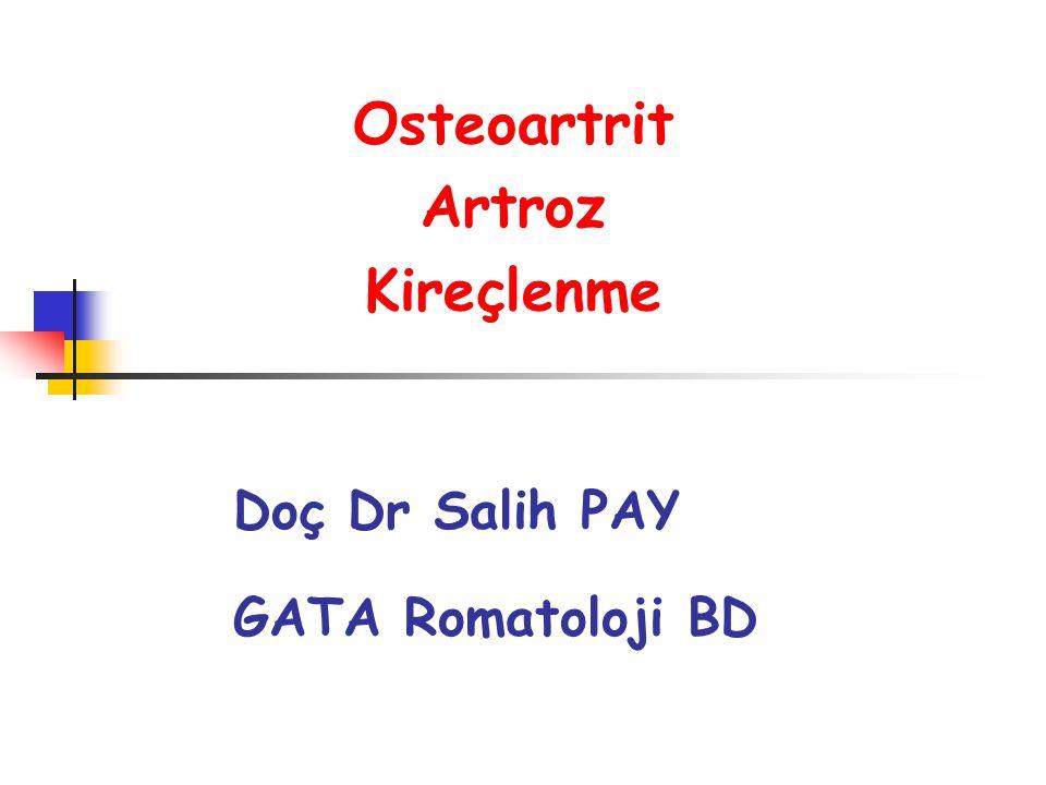 Osteoartrit Artroz Kireçlenme Doç Dr Salih PAY GATA Romatoloji BD