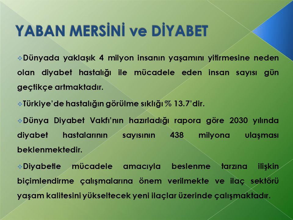  Dünyada yaklaşık 4 milyon insanın yaşamını yitirmesine neden olan diyabet hastalığı ile mücadele eden insan sayısı gün geçtikçe artmaktadır.  Türki