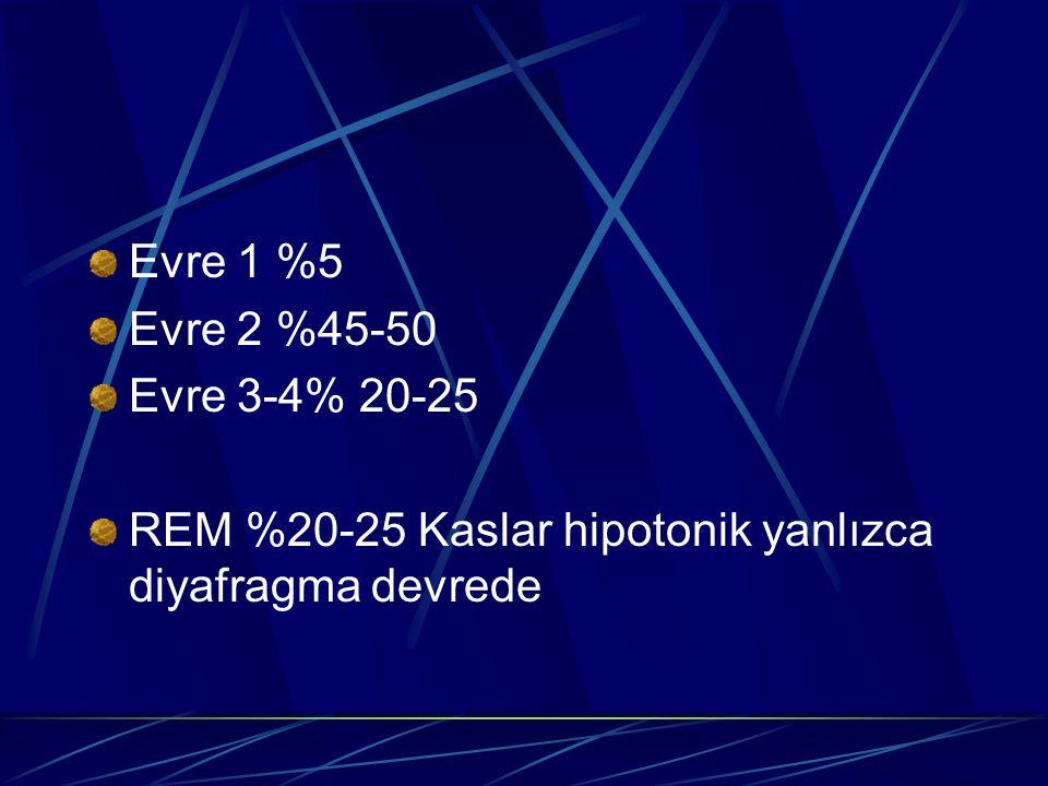 Evre 1 %5 Evre 2 %45-50 Evre 3-4% 20-25 REM %20-25 Kaslar hipotonik yanlızca diyafragma devrede