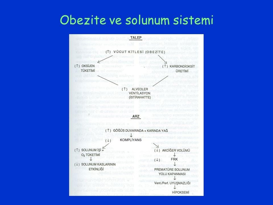 Obezite ve solunum sistemi