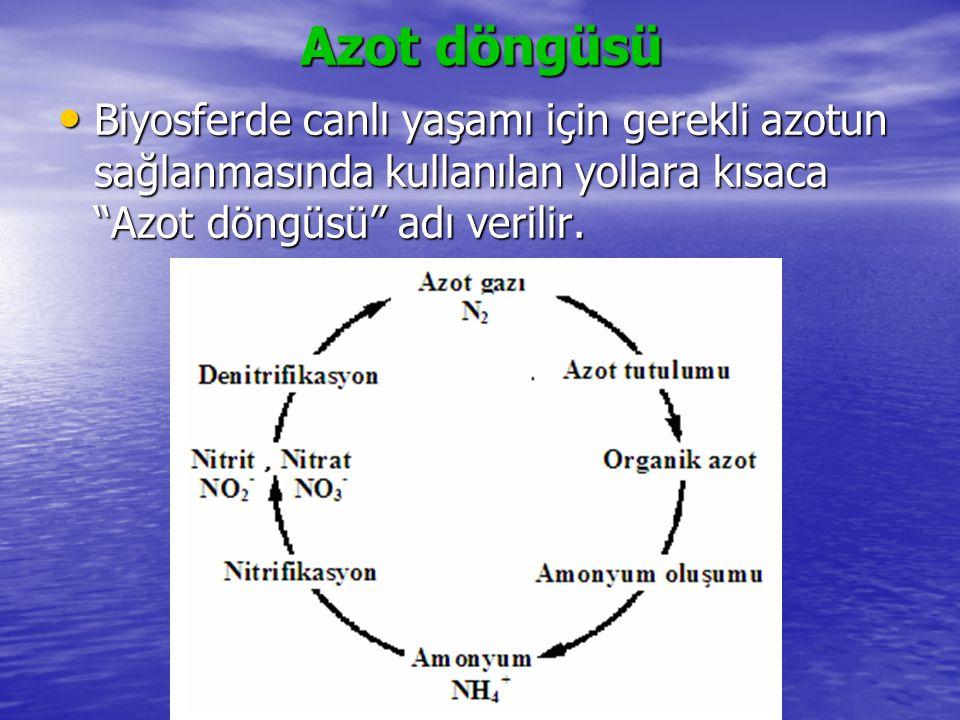 """Azot döngüsü Biyosferde canlı yaşamı için gerekli azotun sağlanmasında kullanılan yollara kısaca """"Azot döngüsü"""" adı verilir. Biyosferde canlı yaşamı i"""