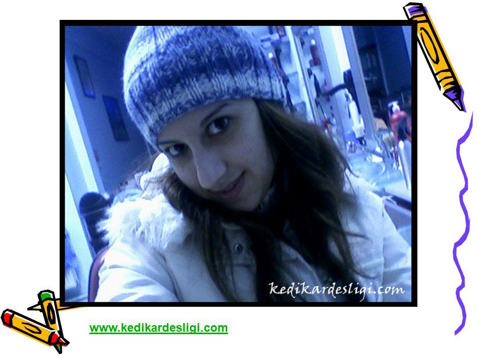 www.kedikardesligi.com