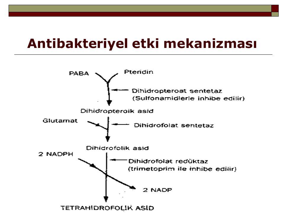  Sonuçta purin bazları ve timidin yapımını sağlayan enzimlerin kofaktörü olan tetrahidrofolat türevleri yapılamaz ve bakterilerde DNA ve RNA sentezi bozulur  Sulfonamidlerin dihidrofolat redüktaz enzimi üzerine etkisi yoktur