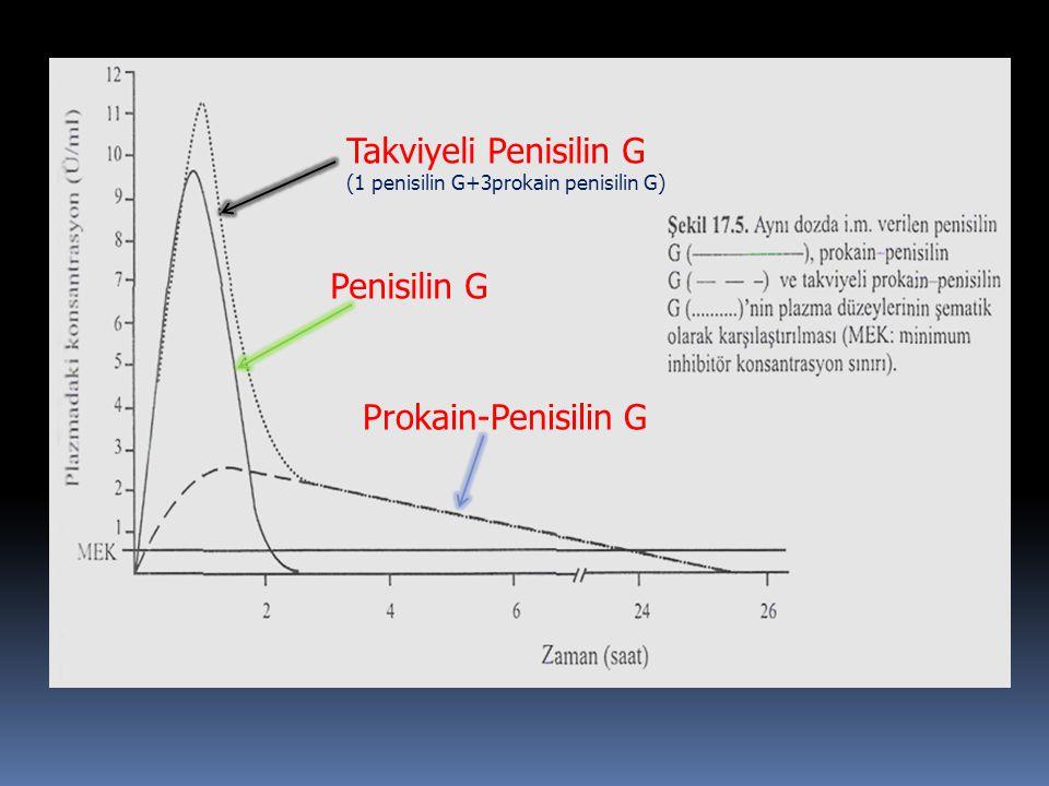 Takviyeli Penisilin G (1 penisilin G+3prokain penisilin G) Penisilin G Prokain-Penisilin G