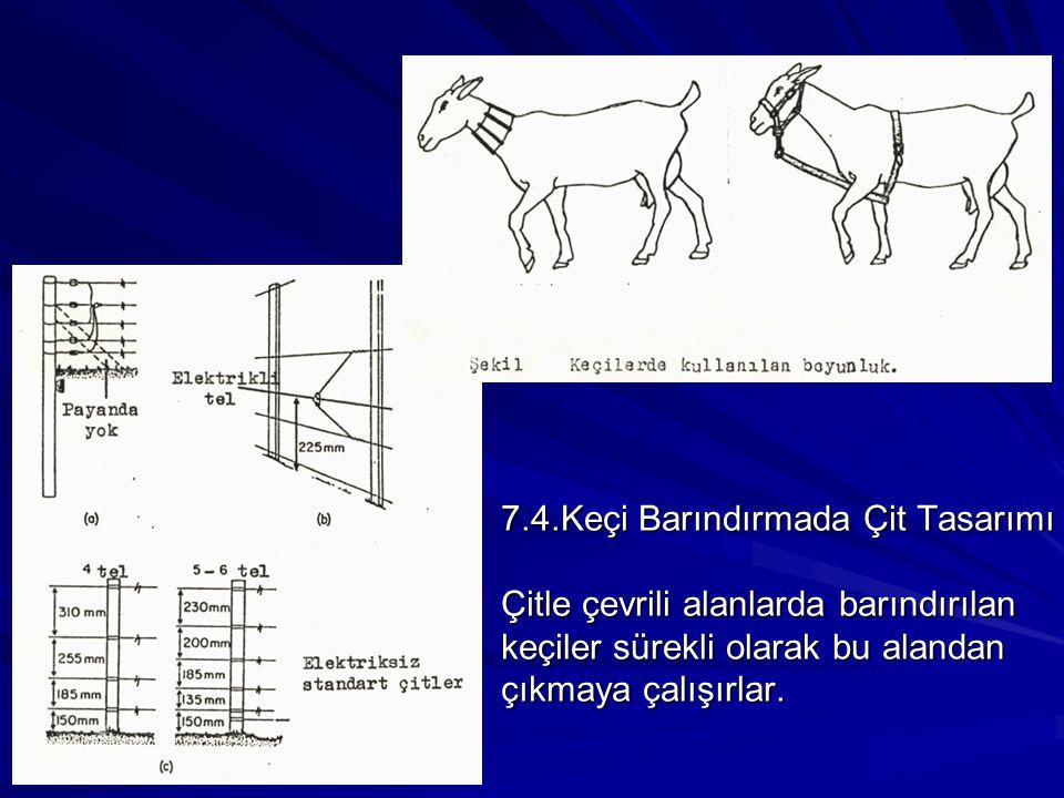 7.4.Keçi Barındırmada Çit Tasarımı Çitle çevrili alanlarda barındırılan keçiler sürekli olarak bu alandan çıkmaya çalışırlar.