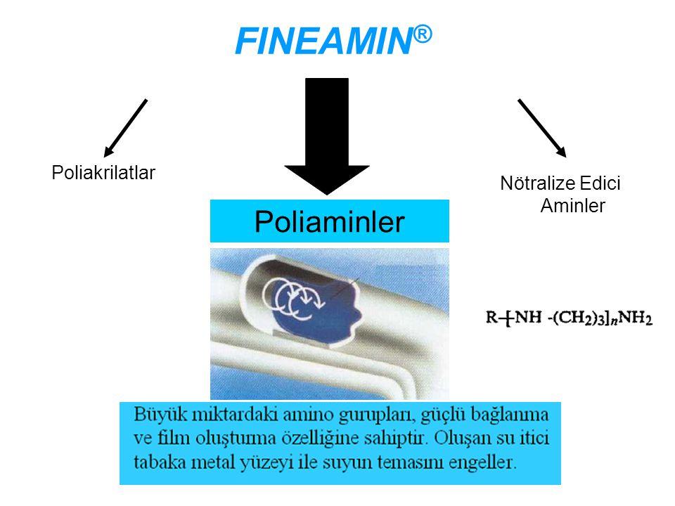 İLE ŞARTLANDIRMA AVANTAJLARI öncesi sonrası Depozit Tufal Fe(OH) 2 Magnetit tabakası FINEAMIN ®