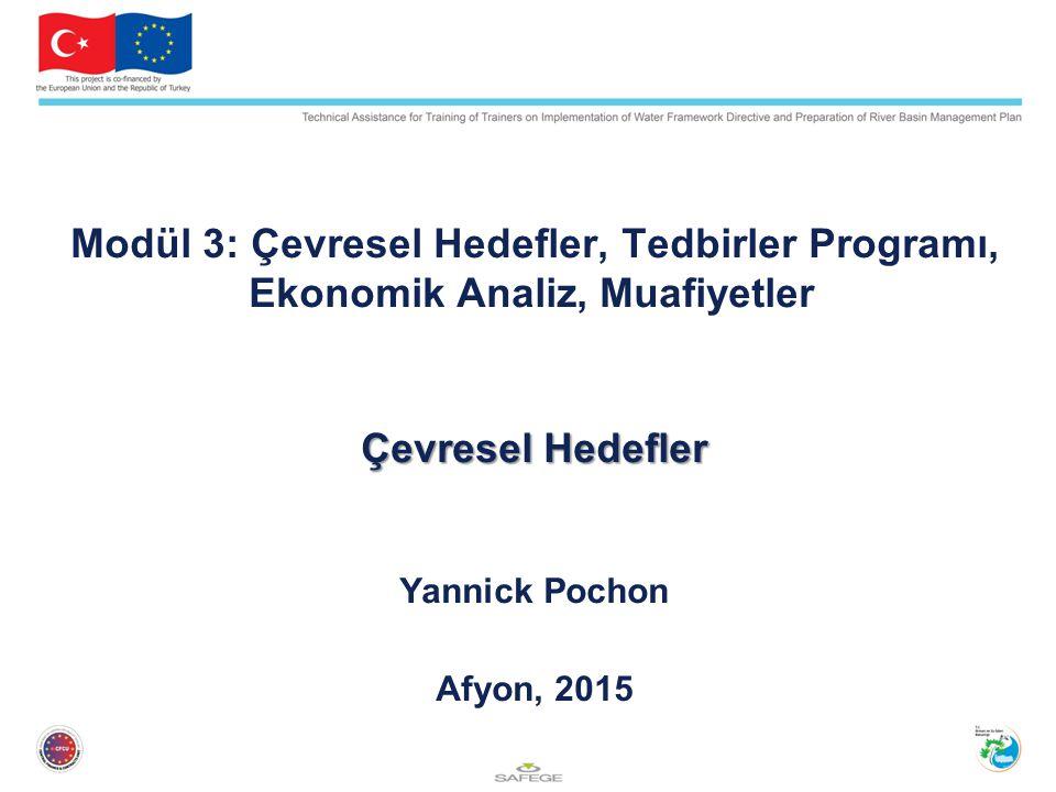 Modül 3: Çevresel Hedefler, Tedbirler Programı, Ekonomik Analiz, Muafiyetler Çevresel Hedefler Yannick Pochon Afyon, 2015