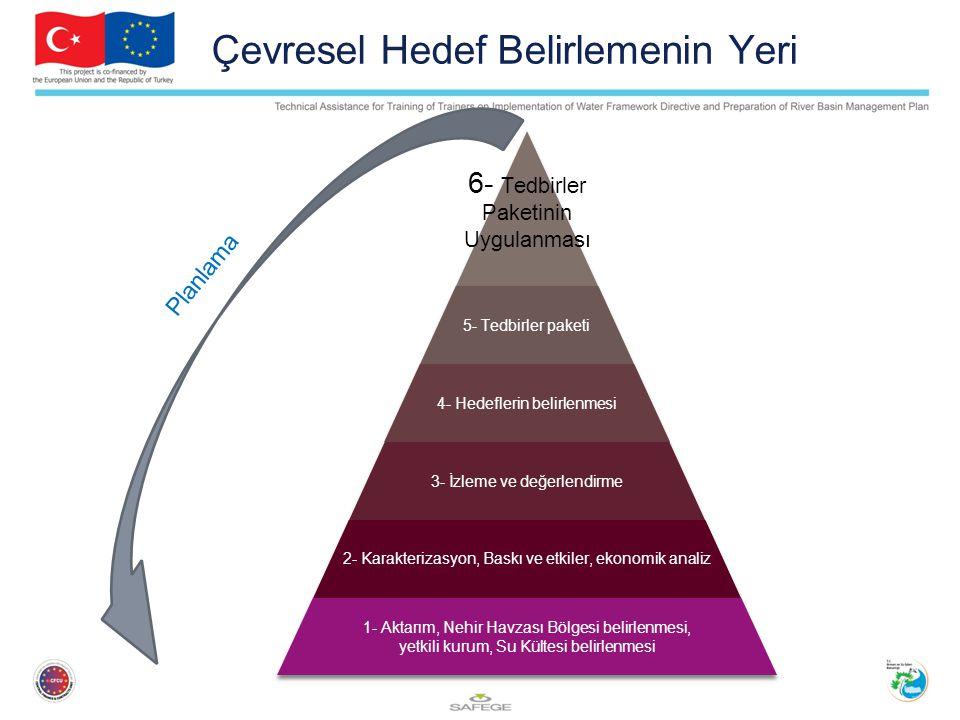 Çevresel Hedef Belirlemenin Yeri 6- Tedbirler Paketinin Uygulanması 5- Tedbirler paketi 4- Hedeflerin belirlenmesi 3- İzleme ve değerlendirme 2- Karakterizasyon, Baskı ve etkiler, ekonomik analiz 1- Aktarım, Nehir Havzası Bölgesi belirlenmesi, yetkili kurum, Su Kültesi belirlenmesi Planlama