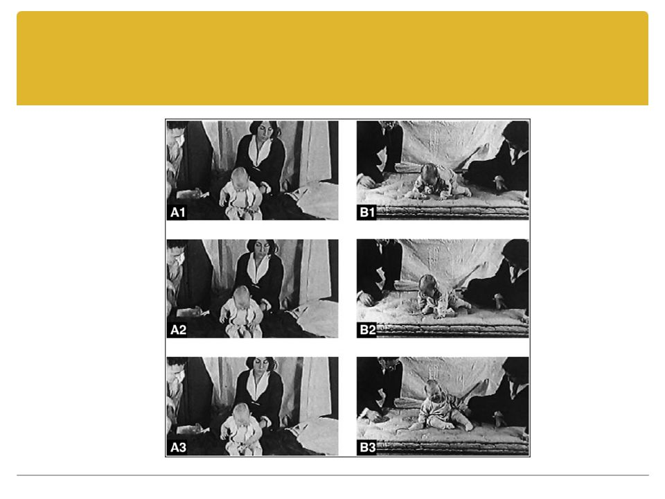 Kaynaklar Senemoğlu, N.(2005). Gelişim Öğrenme ve Öğretim, Kuramdan Uygulamaya.