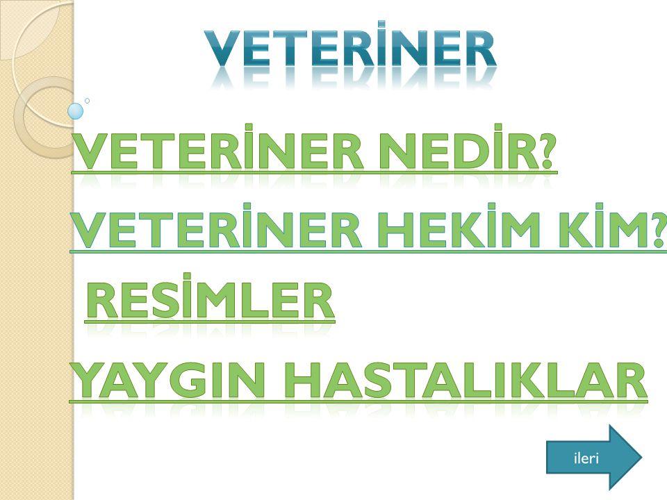 Hayvan sa ğ lı ğ ının korunması için önlemler alan, hayvan hastalıklarına tanı koyan, tıbbî ve cerrahî girişimlerde bulunarak hastalı ğ ın tedavisini sa ğ layan kişi.