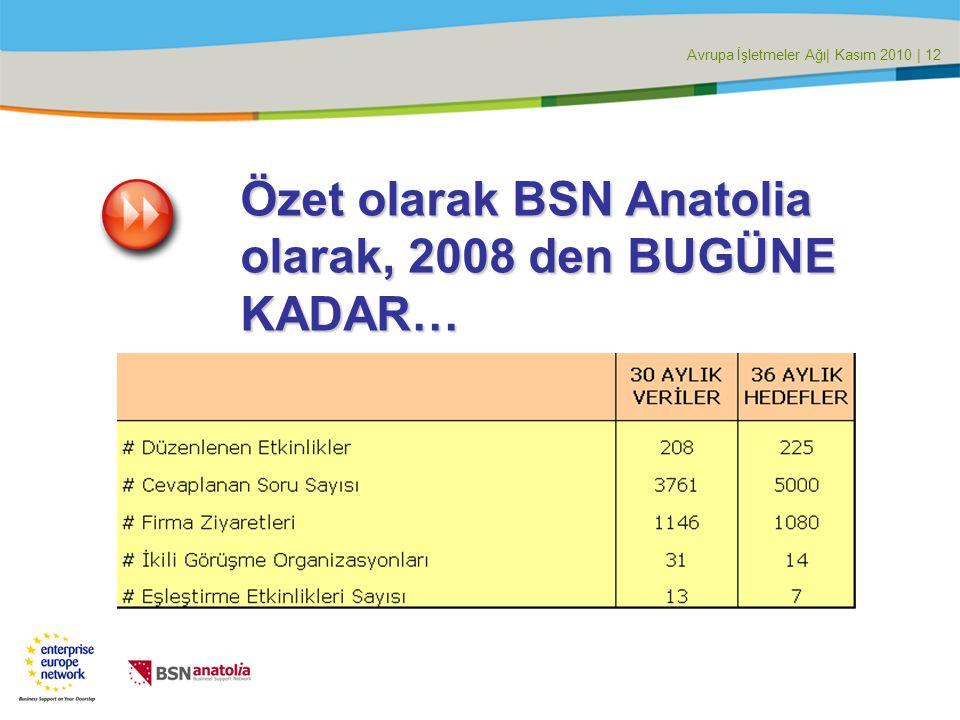 Avrupa İşletmeler Ağı| Kasım 2010 | 12 Özet olarak BSN Anatolia olarak, 2008 den BUGÜNE KADAR…