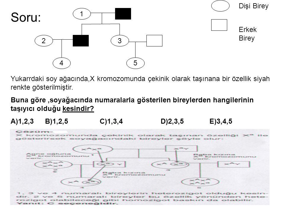 Soru: 1 2 4 3 5 Dişi Birey Erkek Birey Yukarrdaki soy ağacında,X kromozomunda çekinik olarak taşınana bir özellik siyah renkte gösterilmiştir. Buna gö