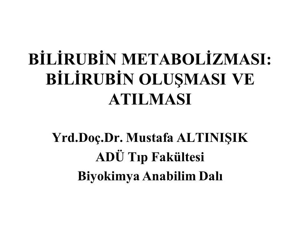 BİLİRUBİN METABOLİZMASI: BİLİRUBİN OLUŞMASI VE ATILMASI Yrd.Doç.Dr. Mustafa ALTINIŞIK ADÜ Tıp Fakültesi Biyokimya Anabilim Dalı