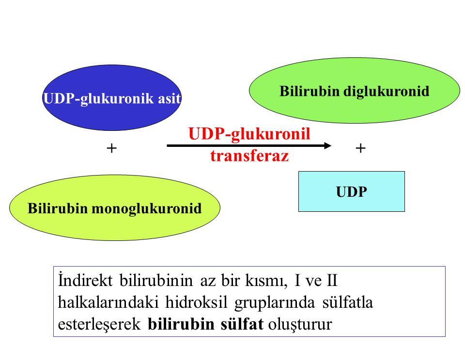UDP-glukuronik asit + UDP-glukuronil transferaz Bilirubin monoglukuronid + UDP Bilirubin diglukuronid İndirekt bilirubinin az bir kısmı, I ve II halka