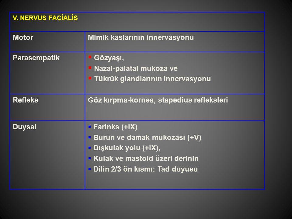 V. NERVUS FACİALİS MotorMimik kaslarının innervasyonu Parasempatik  Gözyaşı,  Nazal-palatal mukoza ve  Tükrük glandlarının innervasyonu RefleksGöz
