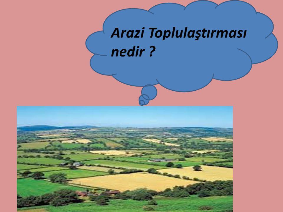 Bütün bu yararları doğrultusunda arazi toplulaştırılması yapıldıktan sonra sorunlar çözüldü mü ???.